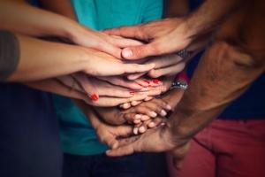 Mettre en place des outils collaboratifs