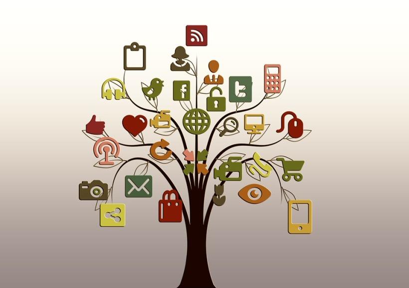 tree-200795_960_720